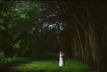 Southern Highland Wedding Photography / Southern Highlands wedding ceremony venues,  Southern Highlands wedding photo locations and Southern Highland wedding reception venues. Wedding in the Southern Highlands NSW, Australia. Bowral Wedding Photography.