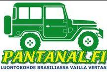 PANTANAL / Pantanal