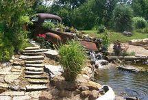 Gardening/ landscaping / by Brenda Acevedo