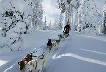Finlandia - Suomi - Finland