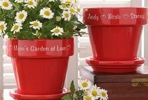 Flower Pots/ Center pieces