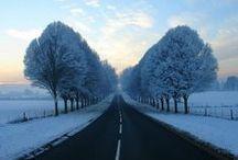 All the Seasons   Winter