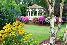 Backyard-Gazebo's / A place to relax. / by Linda Finni