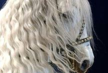 Horses / Everything to do with horses. Horse accessories and clothing, horse t-shirts, horse riding t-shirts, funny pictures and quotes, if its to do with horsees here is where you will find it.