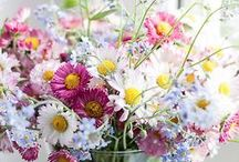 ★ b l o e m e n - k l e u r / Mooi gekleurde bloemen