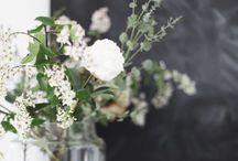 ★ b l o e m e n - w i t / Mooie witte bloemen, mijn favorieten.