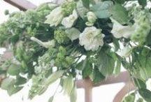 Geranium Lake Weddings: Green