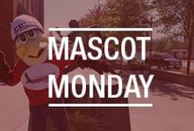 #MascotMonday / What is #MascotMonday? Simple. Every Monday we will share a photo of Eddie the Eagle (the credit union mascot) hanging out somewhere in the St. Louis metro area. Know where he is? Guess correctly on our Facebook page for a chance to win gift cards, swag, etc. Check it out! http://www.facebook.com/ABCreditUnion/
