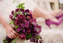 Wedding / by Erin Havah // StyleItKosher.com