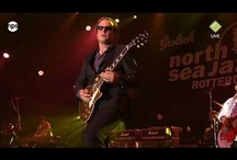 Joe Bonamassa / Joe Bonamassa (born May 8, 1977) is an American blues rock guitarist and singer. He began his career playing guitar in the band Bloodline, which featured the offspring of several famous musicians; Miles Davis, Robby Krieger of The Doors, and Berry Oakley of The Allman Brothers Band.