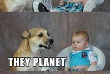 funny / by Ranjini Thomas