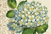 Printable - Flowers