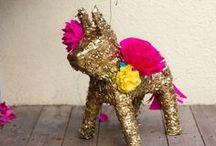 Fiesta / by contessa darling