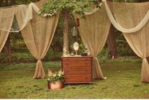 Wedding ideas / by Amy Thompson