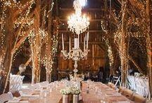 Wedding Decor / by Ashleigh Barry