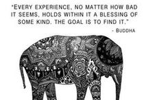 Buddhism / by Ashleigh Barry