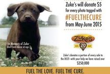#FuelTheCure with Zuke's / All of these wonderful pictures of dogs in action and loving life are helping to fight canine cancer! Post a picture of your pup, tag it with #FuelTheCure and @ZukesPets and Zuke's will donate $5 to The Dog and Cat Cancer Fund. Campaign runs May-June, 2015!!