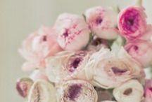 Flower Power / by Danielle Hardy