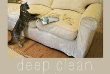 Cleaning / by Michelle Condon