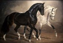 Art: Horses / by Anne Pidek