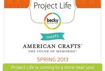 Project Life / by Melissa Wilson