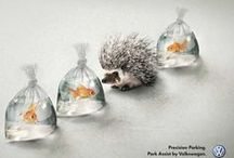 Advertising All-Stars / Really clever and eye-catching ad campaigns