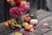 Fall = The BEST time of year... / by Shannon Heath