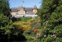 Gardens To Visit In Europe / Interesting botanical gardens with prominent displays of Rhododendrons to visit in Europe.