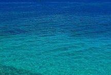 Color of the Ocean / by LaDonna K
