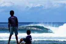Surfs Up ! / by Elisa Economy-Morgan