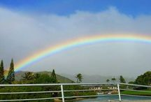 Rainbows, Alive with Color / by Elisa Economy-Morgan