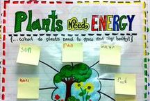 Science & Social Studies / -- ideas for your little scientists --