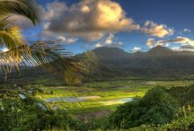 Kauai, Hawaii / The Garden Island / by Elisa Economy-Morgan