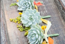 Wedding Succulents / Ideas to incorporate gorgeous succulents into your wedding day.