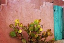 Tucson and Arizona / I love the Tucson