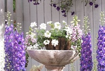 Flowers - from the garden to the bouquet to the centerpiece / Flowers - from the garden to the bouquet to the centerpiece (tablescapes) / by Linda Shriver-Buckner