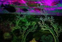 Digital Art by mimulux patricia no / Digitally created art