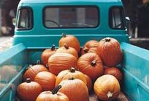 Autumn / Crafts, decor and ideas for Halloween, Thanksgiving, October & November