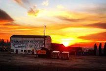 Favorite Places + Spaces. / Cameron+Company  - California, Petaluma, Sonoma County, Napa...