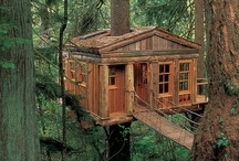 ✔Tree House ♥♥♥♥ / Contemplating in the Trees  ♥  ♥  ♥  / by S♥lly✿♥‿♥✿♎★☮✌♥
