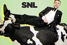 Saturday Night Live / For more SATURDAY NIGHT LIVE, click the series logo on the bottom left of the double line to follow their official profile! http://pinterest.com/nbcsnl/ / by NBC