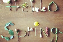 Easter/Spring/Mother's Day / Spring holidays / by Allyson Pearl