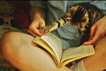 Books & Cats / Books & cats are two of my favorite things. / by Allyson Pearl