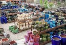 pots / Brighten your outdoors with a wide variety of shapes, sizes and colors to accessorize your plants.
