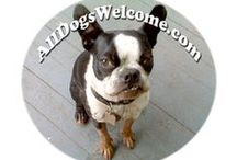 All Dogs Welcome Blog / Blog Posts from www.alldogswelcome.com