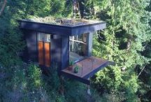 Tree House / I want to feel like I am living in an enormous tree, with energy provided by the sun, surrounded by nature's colors, pet-friendly.