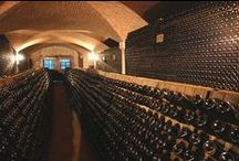 Wine Cellars & Storage / Amazing wine cellars, wine rooms, wine closets, wine furniture... any kind of storage for wine!   (Group Pinners:  don't forget to scroll down the page for awhile to make sure your wine cellar picture hasn't been posted recently - thanks!)