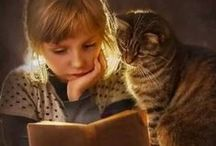 Here Reading Kitty / Books and Cats