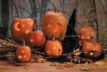 Halloween / by Glenda