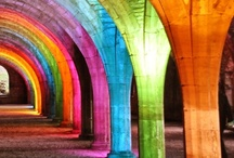 for the love of colour / by Cara Lewis